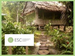 Amazonian ayahuasca tourism and millenarian imperialism: The story of the Ethnobotanical Stewardship Council